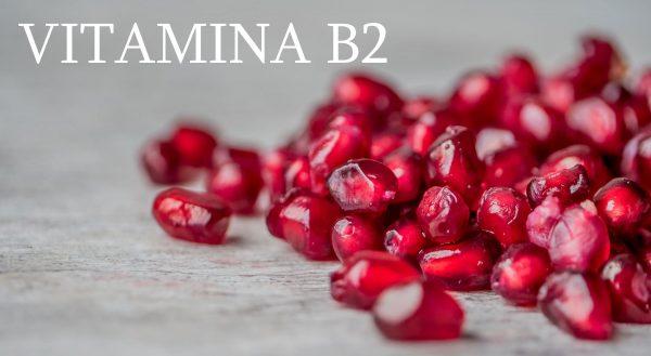 Vitamina B 2
